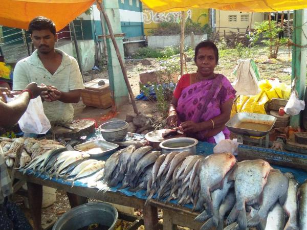 An image of a woman standing behind a stall with fish.